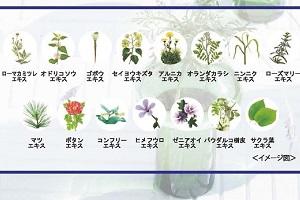 ハーブマジックヘアカラーの植物エキス